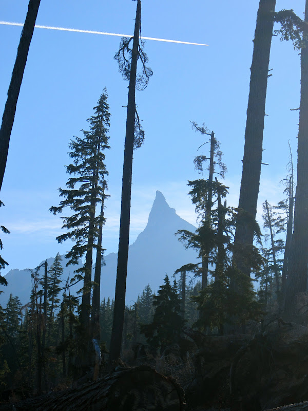 mt thielsen2